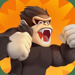 >愤怒的猴子